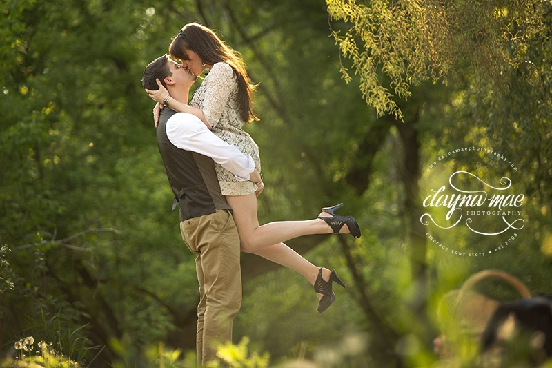 ann_arbor_engagement_10