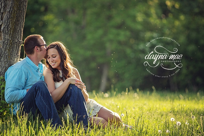 ann_arbor_engagement_04