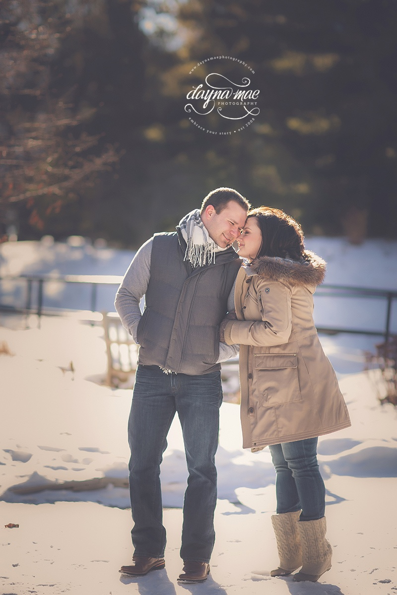 ann_arbor_engagement_03