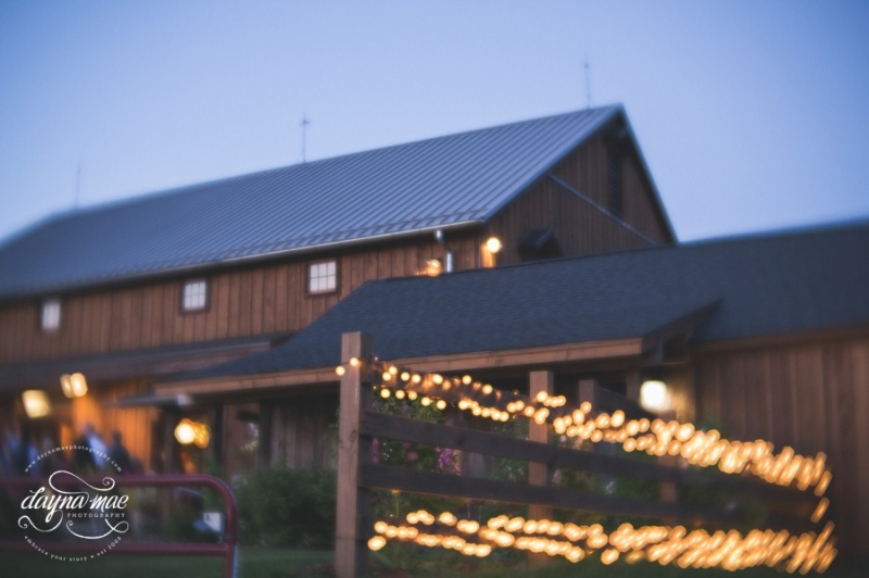 Frutig_Farms_Ann_Arbor_Wedding_0092